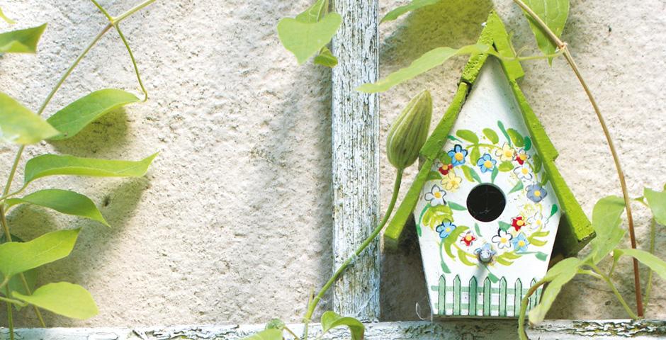 Immobilie vorhanden - Käufer gesucht Motiv Vogelhäuschen