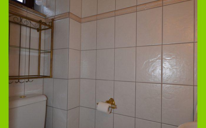 Das moderne Gäste-WC.