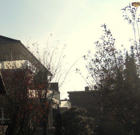 Ansicht Haus hinten